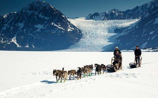 alaska hondenslee tocht.jpg
