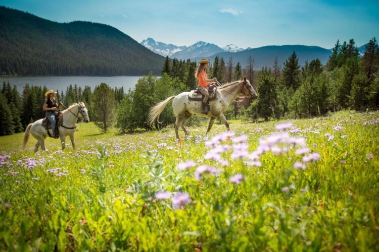tyax lodge heliskiing activiteit paardrijden.jpg