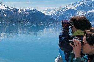 Columbia & Meares Glacier Cruise