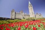 Ottawa 001